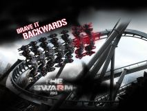 swarmbackwards